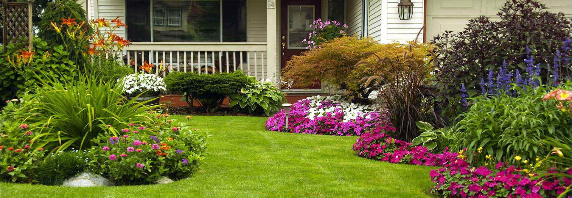 San antonio landscaping design call us today 210 725 1960 for San antonio landscaping ideas